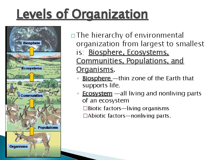 Levels of Organization � The hierarchy of environmental organization from largest to smallest is: