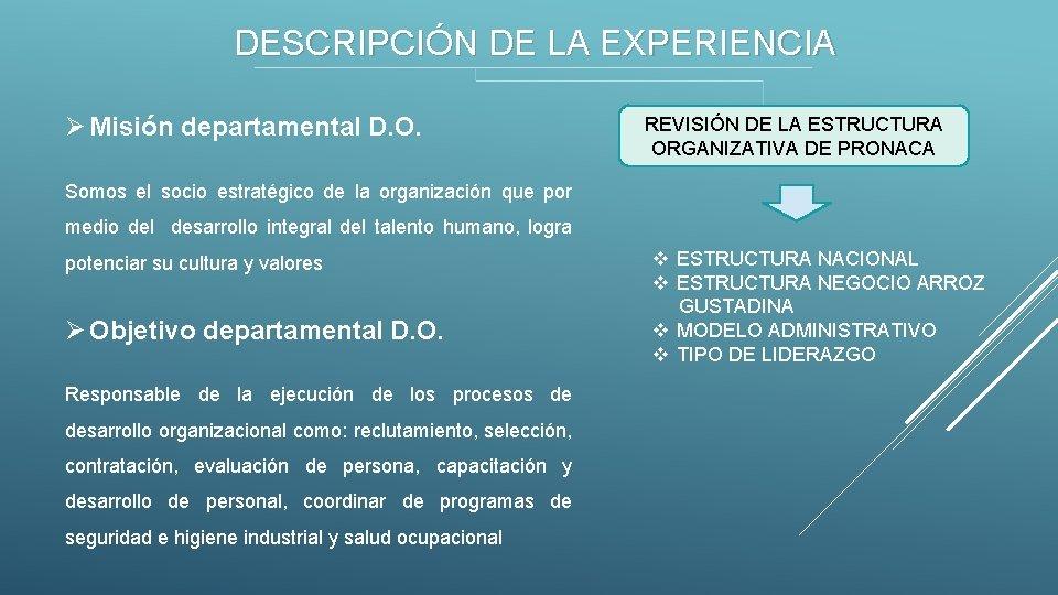 DESCRIPCIÓN DE LA EXPERIENCIA Ø Misión departamental D. O. REVISIÓN DE LA ESTRUCTURA ORGANIZATIVA
