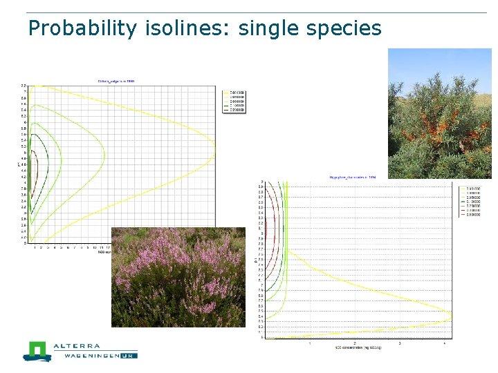 Probability isolines: single species
