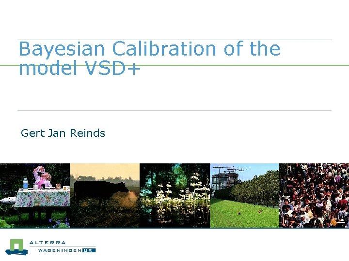 Bayesian Calibration of the model VSD+ Gert Jan Reinds