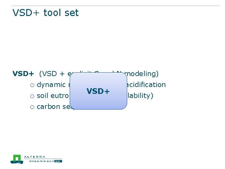 VSD+ tool set VSD+ (VSD + explicit C and N modeling) o dynamic modeling