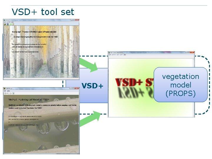 VSD+ tool set Grow. UP (growth, litterfall and uptake) VSD+ Met. Hyd (hydrology, modifying