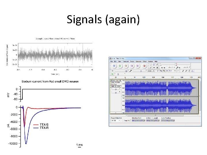 Signals (again)