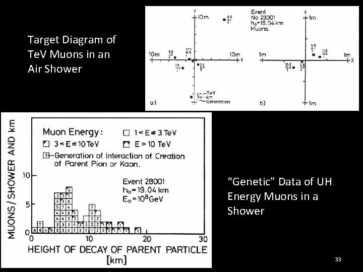 "Target Diagram of Te. V Muons in an Air Shower ""Genetic"" Data of UH"