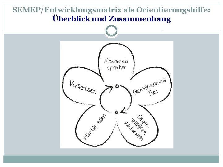 SEMEP/Entwicklungsmatrix als Orientierungshilfe: Überblick und Zusammenhang