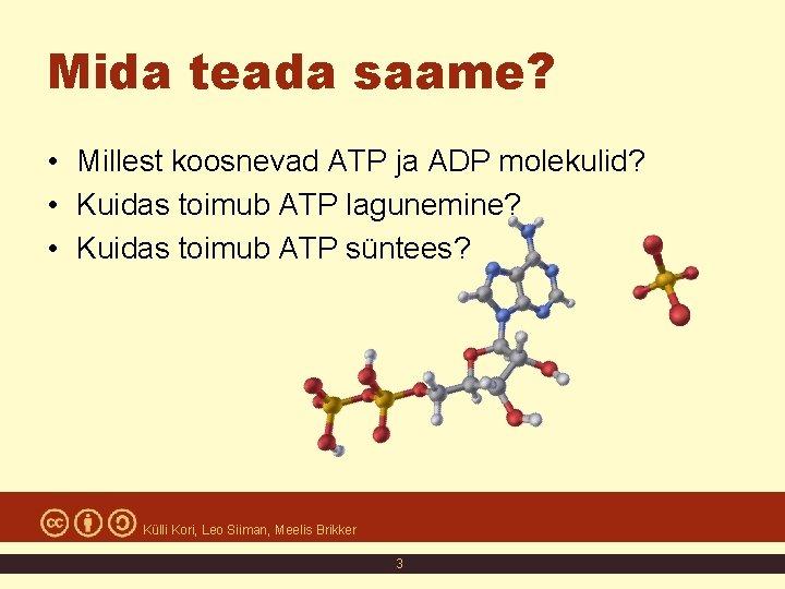 Mida teada saame? • Millest koosnevad ATP ja ADP molekulid? • Kuidas toimub ATP