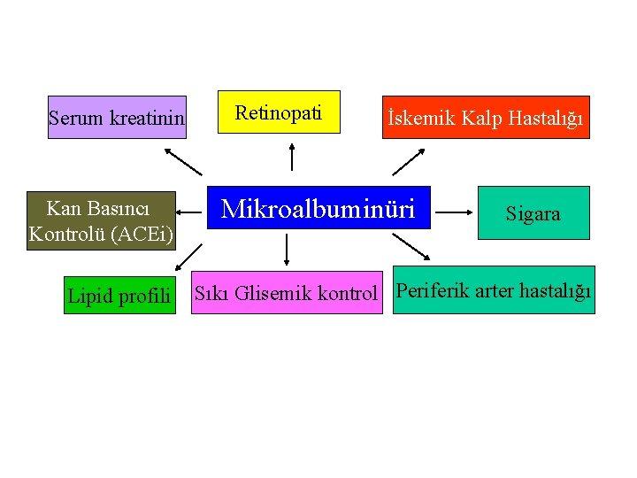 Serum kreatinin Kan Basıncı Kontrolü (ACEi) Lipid profili Retinopati İskemik Kalp Hastalığı Mikroalbuminüri Sigara