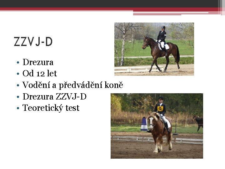 ZZVJ-D • • • Drezura Od 12 let Vodění a předvádění koně Drezura ZZVJ-D