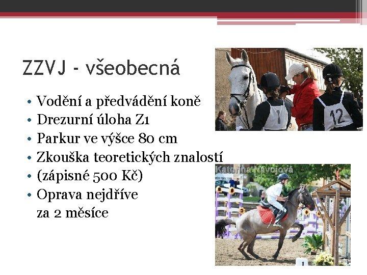 ZZVJ - všeobecná • • • Vodění a předvádění koně Drezurní úloha Z 1