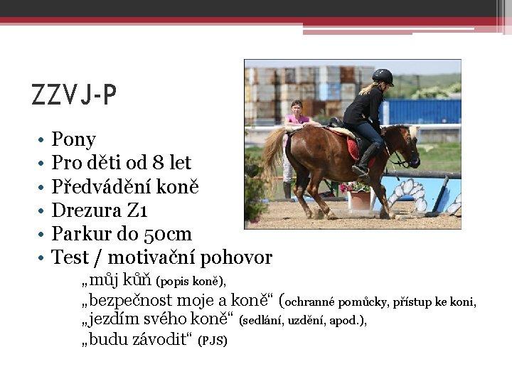 ZZVJ-P • • • Pony Pro děti od 8 let Předvádění koně Drezura Z