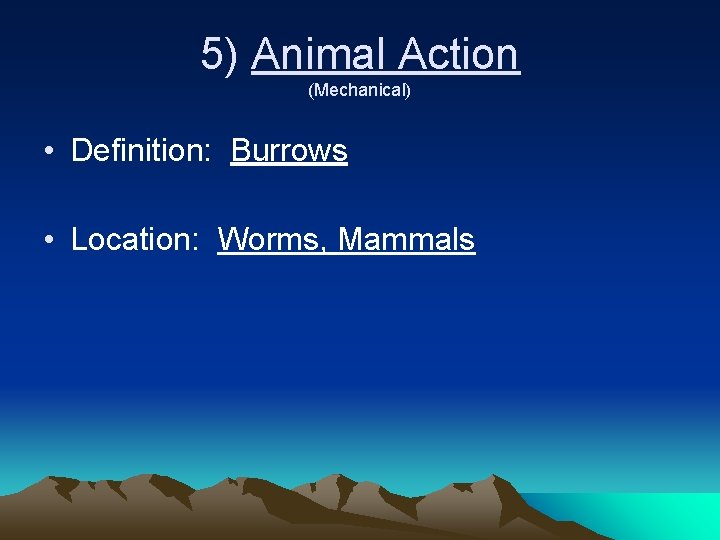 5) Animal Action (Mechanical) • Definition: Burrows • Location: Worms, Mammals