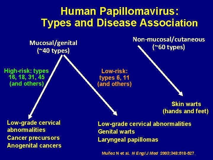 Human Papillomavirus: Types and Disease Association Non-mucosal/cutaneous (~60 types) Mucosal/genital (~40 types) High-risk: types