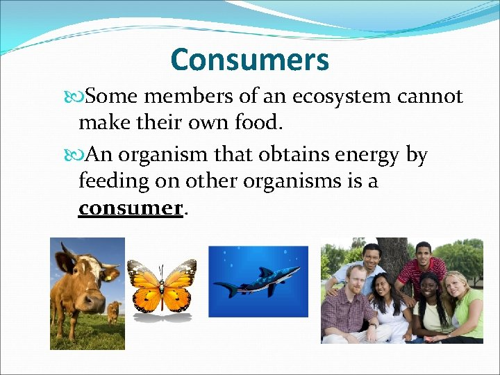 Consumers Some members of an ecosystem cannot make their own food. An organism that