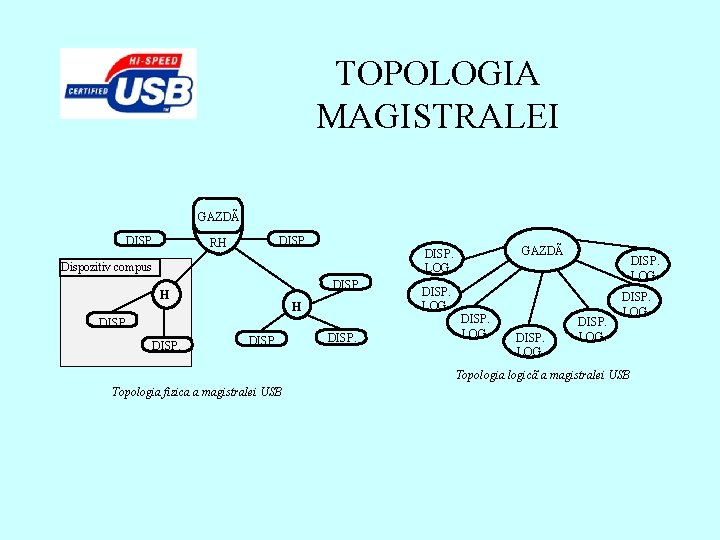 TOPOLOGIA MAGISTRALEI GAZDÃ DISP. RH Dispozitiv compus DISP. H H DISP. GAZDÃ DISP. LOG.