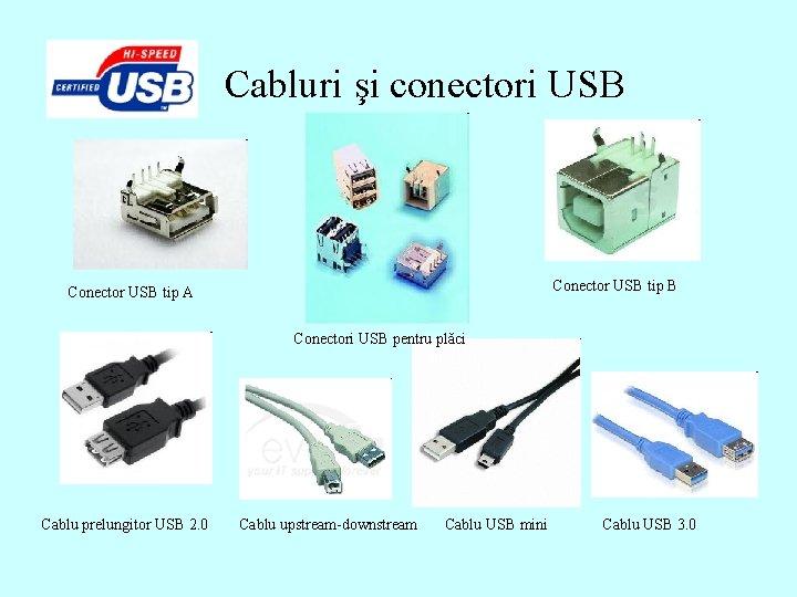 Cabluri şi conectori USB Conector USB tip A Conectori USB pentru plăci Cablu prelungitor