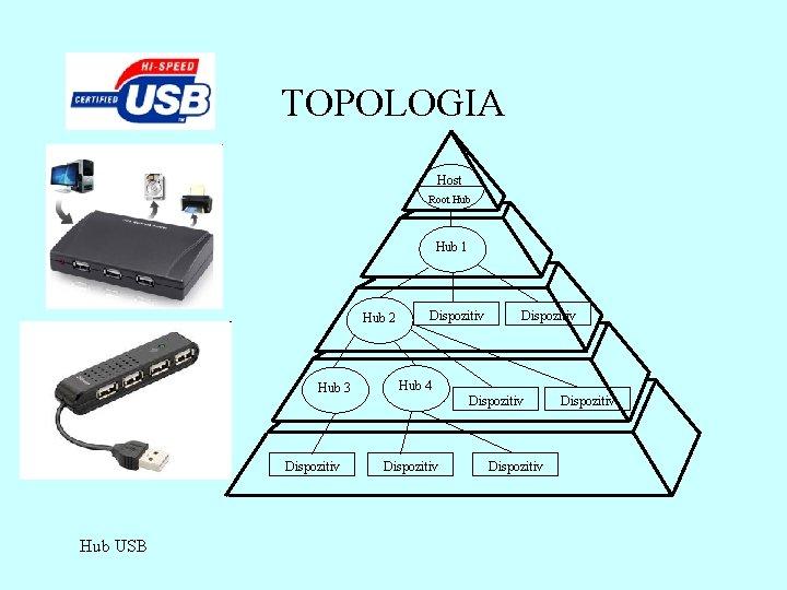 TOPOLOGIA Host Root Hub 1 Hub 2 Hub 3 Dispozitiv Hub USB Dispozitiv Hub