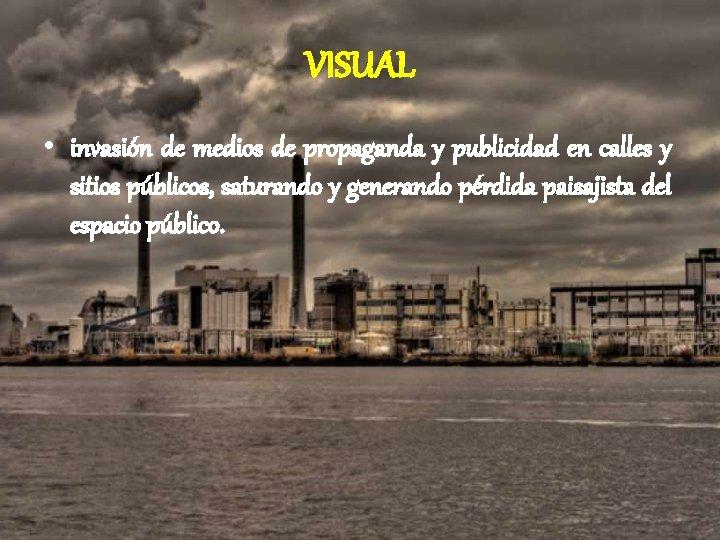VISUAL • invasión de medios de propaganda y publicidad en calles y sitios públicos,
