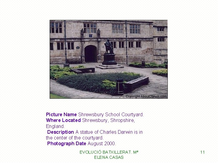 Picture Name Shrewsbury School Courtyard. Where Located Shrewsbury, Shropshire, England. Description A statue of