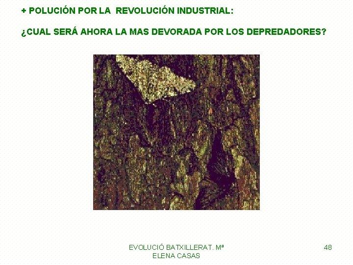 + POLUCIÓN POR LA REVOLUCIÓN INDUSTRIAL: ¿CUAL SERÁ AHORA LA MAS DEVORADA POR LOS