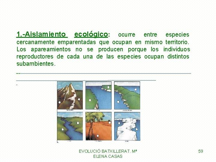 1. -Aislamiento ecológico: ocurre entre especies cercanamente emparentadas que ocupan en mismo territorio. Los