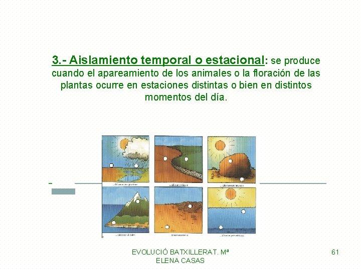 3. - Aislamiento temporal o estacional: se produce cuando el apareamiento de los animales