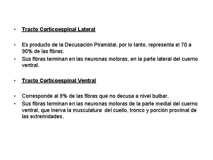 • Tracto Corticoespinal Lateral • Es producto de la Decusación Piramidal, por lo