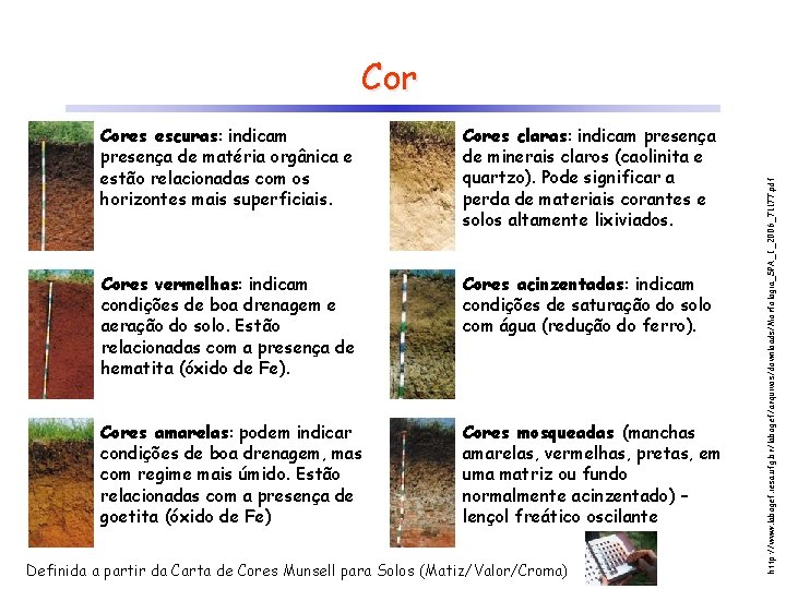Cores escuras: indicam presença de matéria orgânica e estão relacionadas com os horizontes mais