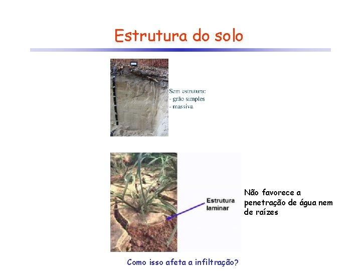 Estrutura do solo Não favorece a penetração de água nem de raízes Como isso