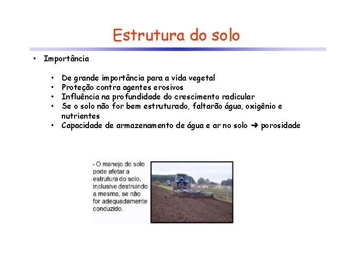 Estrutura do solo • Importância • • • De grande importância para a vida
