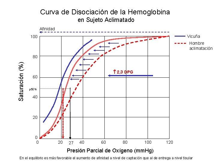 Curva de Disociación de la Hemoglobina en Sujeto Aclimatado Afinidad Vicuña 100 Hombre aclimatación