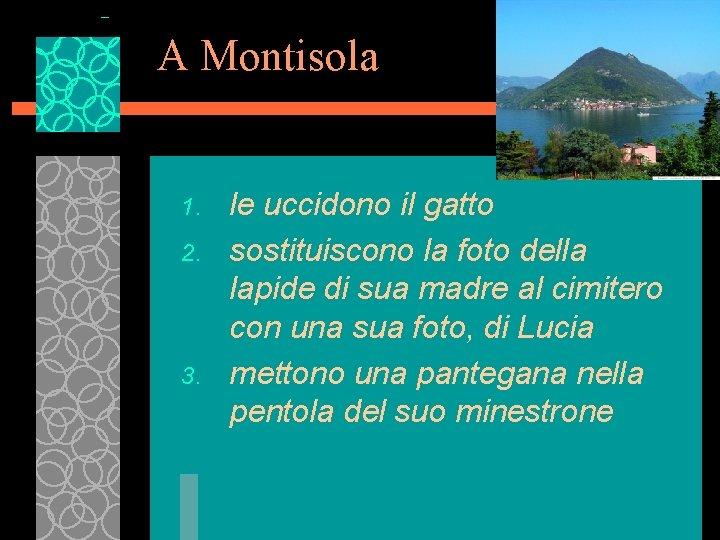 A Montisola 1. 2. 3. le uccidono il gatto sostituiscono la foto della lapide
