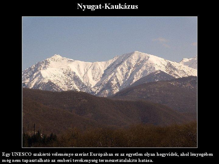 Nyugat-Kaukázus Egy UNESCO szakértő véleménye szerint Európában ez az egyetlen olyan hegyvidék, ahol lényegében