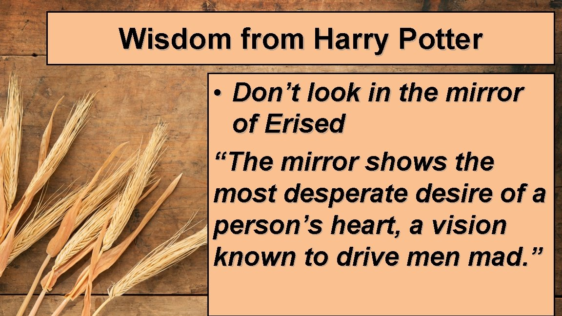 """Wisdom from Harry Potter • Don't look in the mirror of Erised """"The mirror"""