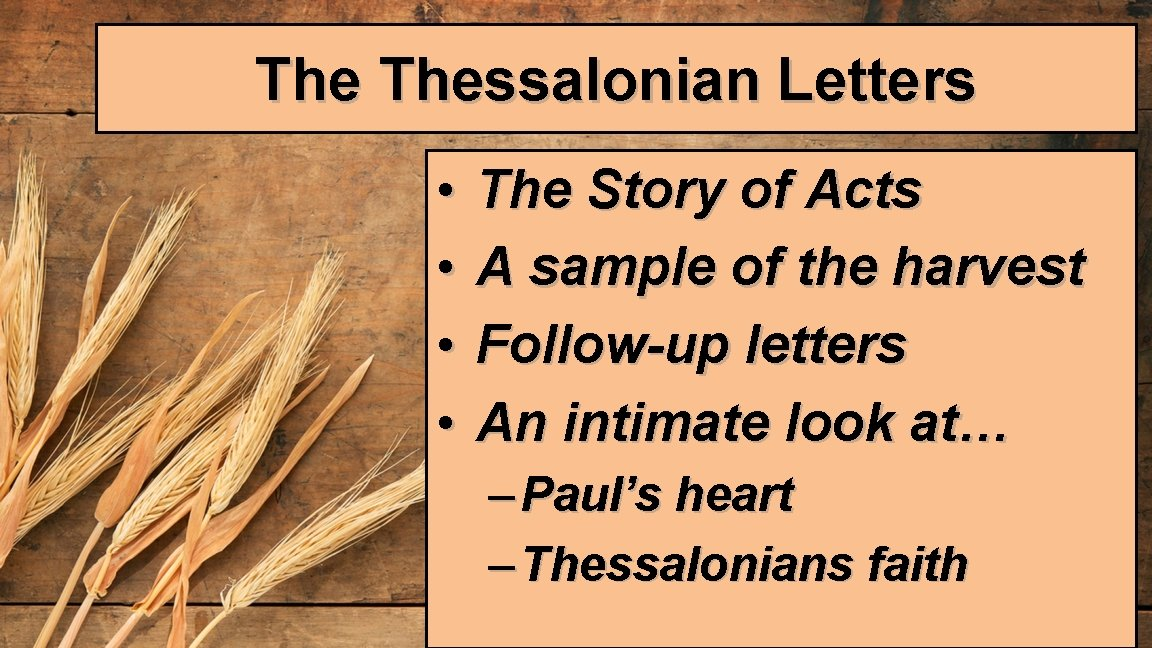 The Thessalonian Letters • • The Story of Acts A sample of the harvest
