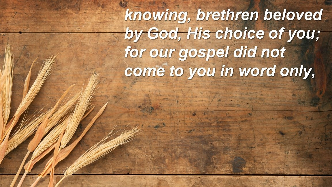 knowing, brethren beloved by God, His choice of you; for our gospel did not