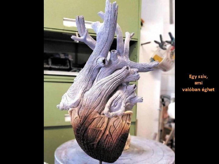 Egy szív, ami valóban éghet