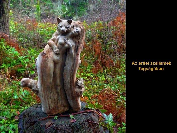 Az erdei szellemek fogságában