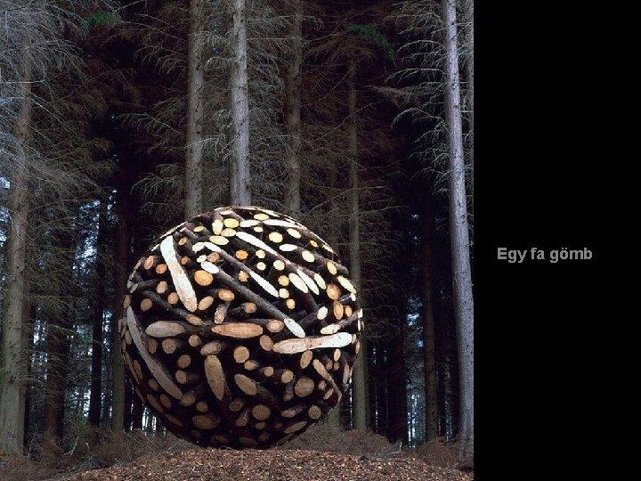 Egy fa gömb