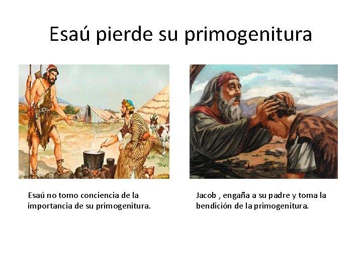 Esaú pierde su primogenitura Esaú no tomo conciencia de la importancia de su primogenitura.