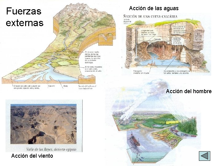 Fuerzas externas Acción de las aguas Acción del hombre Acción del viento