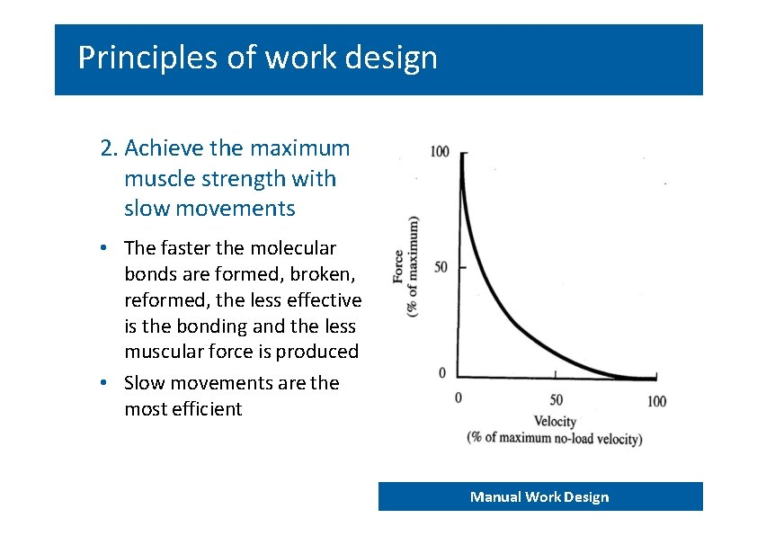 Principles of work design 2. Achieve the maximum muscle strength with slow movements •