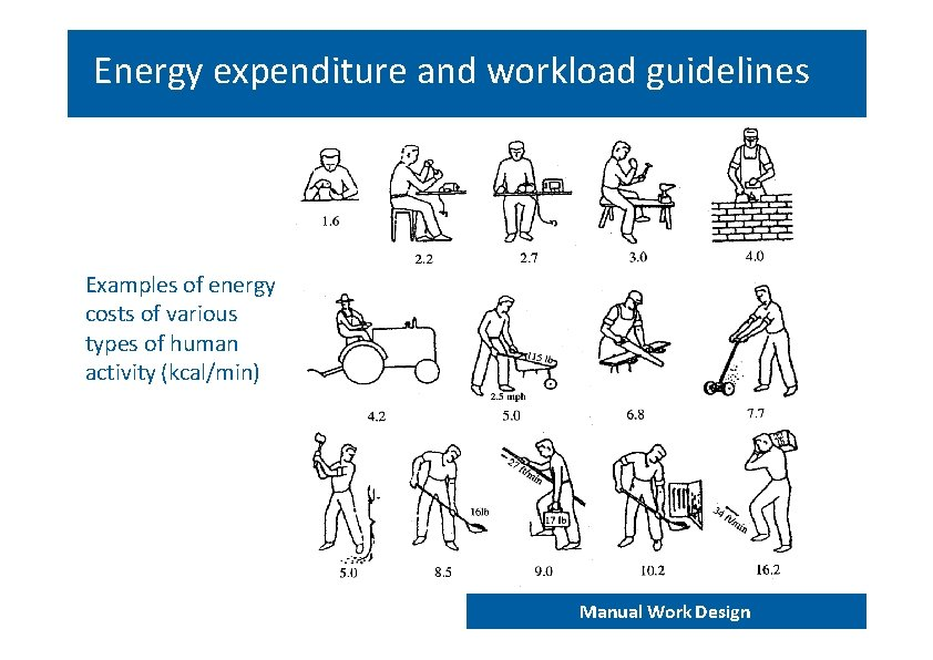 Energy expenditure and workload guidelines Examples of energy costs of various types of human