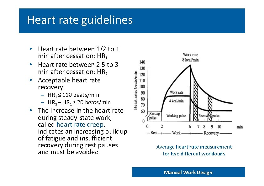 Heart rate guidelines • Heart rate between 1/2 to 1 min after cessation: HR