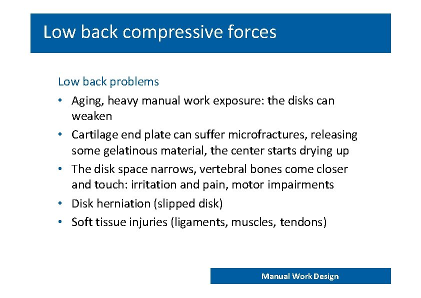 Low back compressive forces Low back problems • Aging, heavy manual work exposure: the