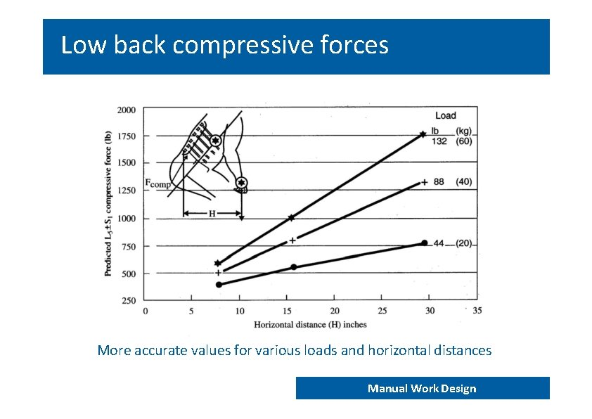 Low back compressive forces More accurate values for various loads and horizontal distances END
