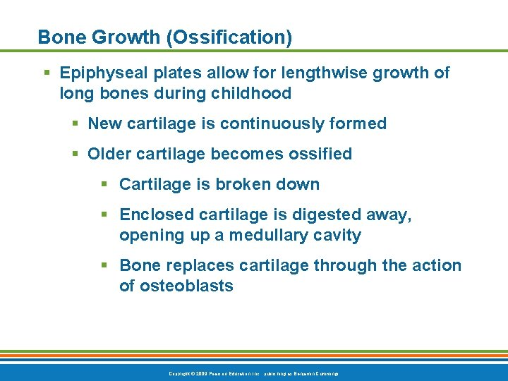 Bone Growth (Ossification) § Epiphyseal plates allow for lengthwise growth of long bones during