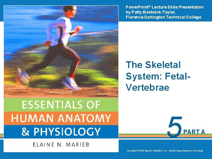Power. Point® Lecture Slide Presentation by Patty Bostwick-Taylor, Florence-Darlington Technical College The Skeletal System: