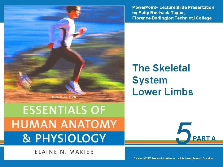 Power. Point® Lecture Slide Presentation by Patty Bostwick-Taylor, Florence-Darlington Technical College The Skeletal System