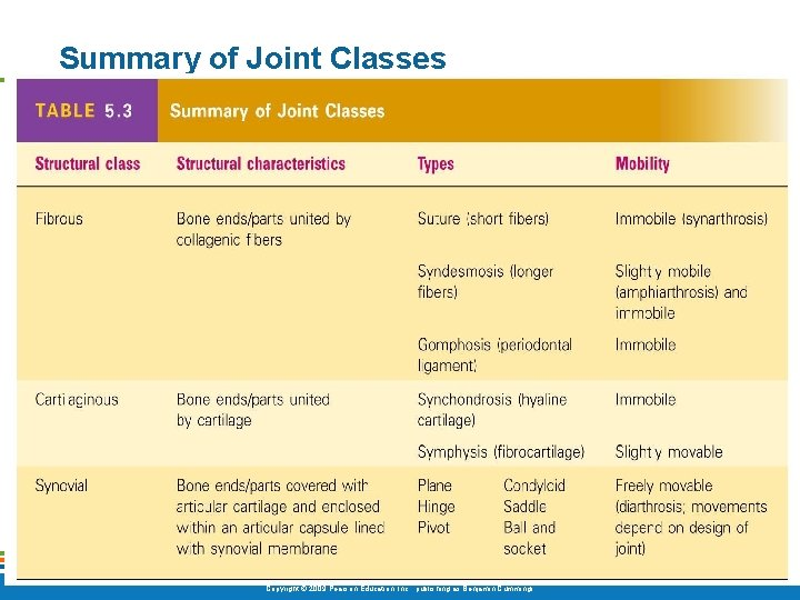 Summary of Joint Classes [Insert Table 5. 3 here] Table 5. 3 Copyright ©