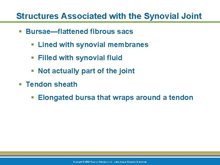 Structures Associated with the Synovial Joint § Bursae—flattened fibrous sacs § Lined with synovial